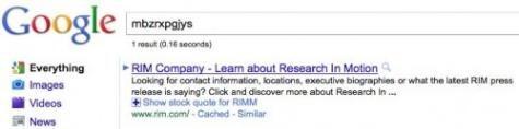 mbzrxpgjys-Google-Search-500x125
