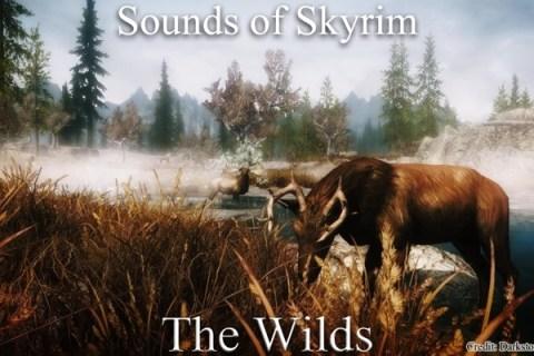 sounds-of-skyrim