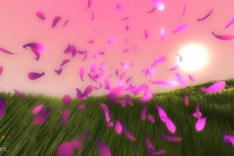 Flower_screen01