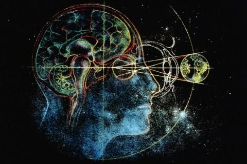 brain-universe