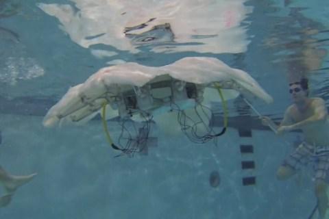 cyro-robotic-jellyfish