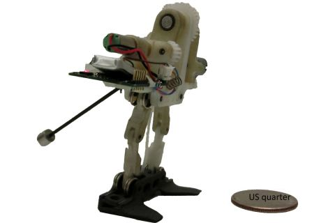 tailbot