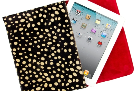 LK by Cellairis Ruby case for iPad