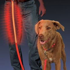 nite-ize-dawg-leash-330px
